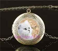 Vintage White Cat and Butterfly Cabochon Glass Brass Locket Pendant Necklace