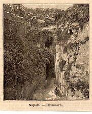 Stampa antica NAPOLI Veduta di Piedigrotta 1891 Old antique print