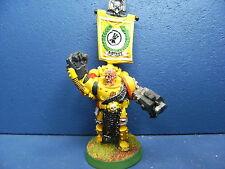 Rar! Imperial Fists GAMESDAY vétéran des space marines peint limitée