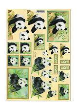 Toller 3D Motivbogen Etappenbogen 3D Bild  Pandabären (080) Quincy