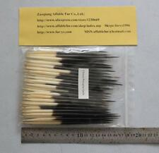 Very Nice Large 30Pcs Chinese Porcupine Quills 5.5-6.5 Inches For Fly Fishing