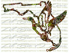 Camo Duck over the Florida State Outline Duck Hunter Vinyl Decal Sticker Hunting