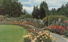 VICTORIA B.C. - The Rose Garden, The Butchart Gardens