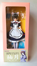 Mama Chapp Toy Yuzuki Black Hair Doll figure MINT NRFB BJD Azone Mail Order only
