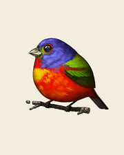 Mike Mitchell Royal McPoyle Painted Bunting Fat Bird 2015 Mondo poster print FLY