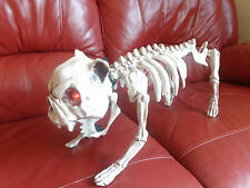 Halloween Life Sized Scary Dog Skeleton with LED Lights/Red Eyes/Lead/Sound