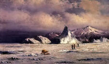 Oil painting william Bradford - arctic invaders hunters with animals Polar bear