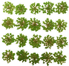 pressed flowers, green lace flower 20pcs for art craft card making confetti