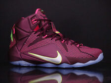 Nike LeBron 12 XII Double Helix Size 13. 684593-607 what the all star MERLOT
