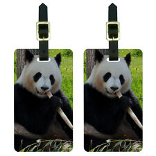 Panda Bear Endangered Luggage Suitcase Carry-On ID Tags Set of 2