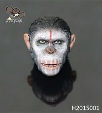 """1/6 Rise of the Planet of the Apes Caesar Head Sclupt F 12"""" Male Figure Body"""