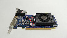 NEW Nvidia GeForce G310 512MB DDR3 DVI HDMI Desktop Graphics Video Card FTGGG