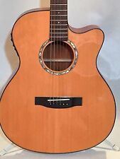 Cutaway Acoustic Guitar Solid Spruce Top Laminate Mahogany with Hard Case