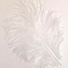 BAG WHITE MARABOU FEATHERS FOR CARDS OR CRAFTS