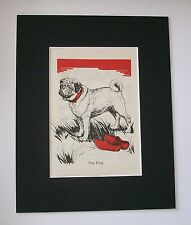 Pug Dog Print Diana Thorne Bookplate 1940 Matted In Field With Wooden Shoes