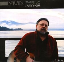 DAVID ESSIG A STONE IN MY POCKET RARE 2/CD SET 30 SONGS FROM 1968-2003