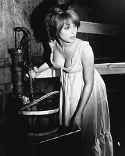 THE FEARLESS VAMPIRE KILLERS SHARON TATE 8X10 PHOTO