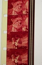 KAL KAT CAT FOOD GOOD MEAT AND LOT OF IT COMMERCIAL 16MM FILM MOVIE ON REEL G16A