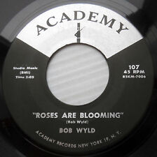 BOB WYLD mod beat 45 ROSES ARE BLOOMING  HOW DO YOU DO IT Gerry Pacemakers F1905