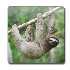 Sloth animal magnet