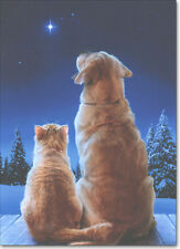 Cat & Dog Star Boxed Christmas Cards - 10 Greeting Cards by Avanti Press