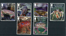 Guernsey 2014 MNH Marine Life II Crustaceans 6v Set Chancre Lobster Hermit Crab