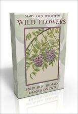 Mary Vaux Walcott, North American Wild Flowers - 400 public domain images on DVD