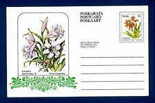 "SOUTH AFRICA - VENDA - Cart. Post. - 1979 - ""Dick Findlay '79"":Crinum lugardiae"