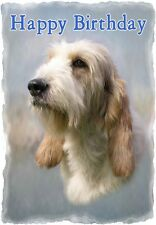 Grand Basset Griffon Vendeen Dog A6 Textured Birthday Card BDGRDBAS paws2print