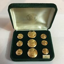 Waterbury Montana State Seal Button Set Gold Plated Blazer Buttons Sport Coat