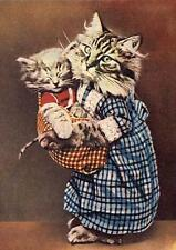 CAT, CHAT, KATZE, REAL CAT DRESSED AT MOTHER WITH KITTEN,VINTAGE PIC, MAGNET