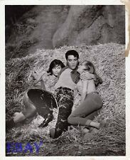 Elvis Presley Kissin Cousins VINTAGE Photo