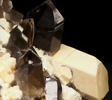 MICROCLINE, ALBITE, SMOKY QUARTZ - Strzegom (Striegau) - POLAND