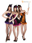 Adult Ladies Sexy Witch Fancy Dress Costume Womens Witches Halloween Size 6 8 10