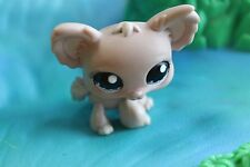 Littlest Pet Shop  Hund  1060