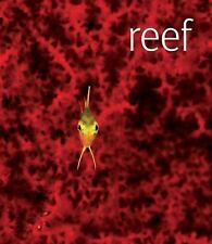 Reef by Scubazoo (2007, Hardcover) Coffee Table Book Reefs Color Photos DVD
