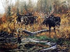 """Andrew Kiss """"Fall Ritual"""" Bull Moose Art Print 12"""" x 8"""""""