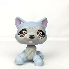 Authentic Littlest Petshop 1046 Husky Dog / Chien Hasbro LPS Pet Shop
