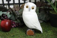 White Realistic Medium Feather Owl Bird Taxidermy Owls Furry Animal Bird B2