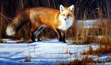 "Edward Aldrich"" Fox on the Run"" Art Print Signed and Numbered"