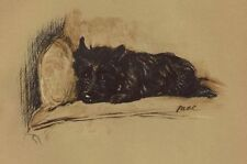 Cairn Terrier - Lucy Dawson Dog Print - MATTED