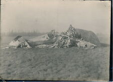 Aviation c. 1930 - Avion Accidenté - AVI 66
