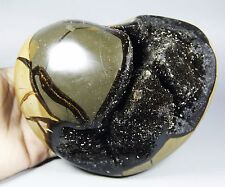 3.99lb NATURAL Dragon Septarian Crystal Polished Gem Stone heart-shaped