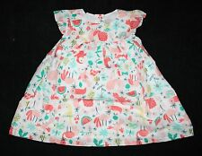 New Gymboree Rainforest Dresss 18-24m NWT Rainforest Crawl Lined Panty Included