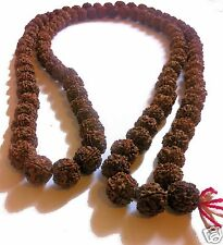 20mm LARGE BODHI SEED NUT MALA MANTRA PRAYER BEADS Buddhist monk necklace N39