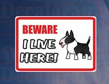 BEWARE I LIVE HERE - BULL TERRIER House/Home Window/Door/Porch Printed Sticker