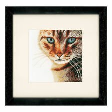 Lanarte - Cross Stitch Kit -  Cat in Close Up - Tabby Cat -  PN-0021220
