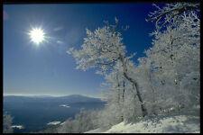 380005 paysage d'hiver New England A4 papier photo