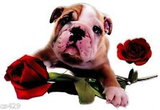 "6.5"" PUPPY DOG BULLDOG VALENTINE ROSE SET  WALL SAFE STICKER CHARACTER BORDER"