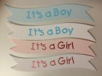 10 PINK OR BLUE BABY IT'S A GIRL BOY SENTIMENT BANNER CARD MAKING EMBELLISHMENTS